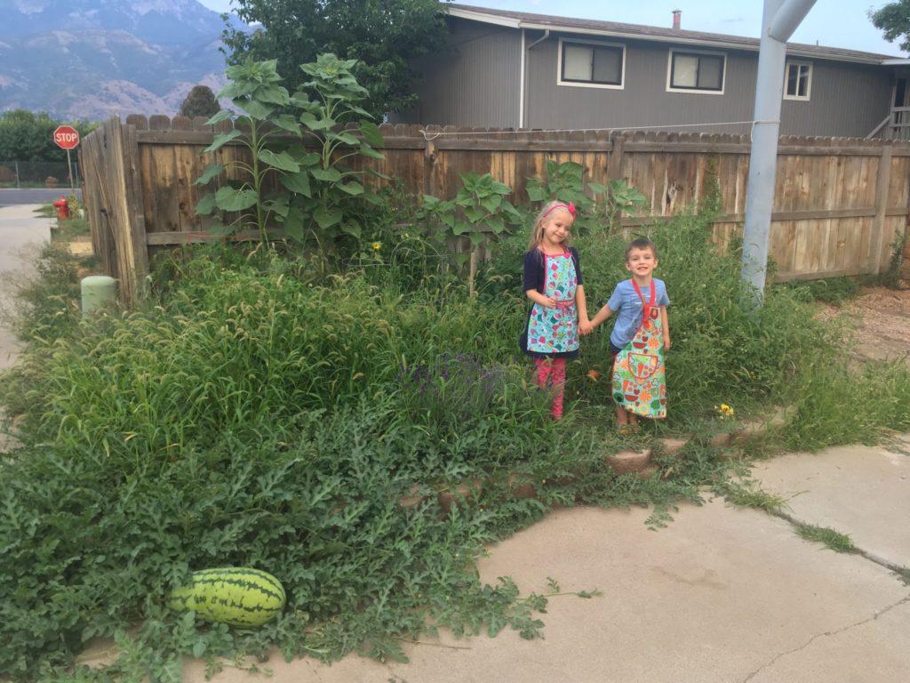 The Garden, August Update