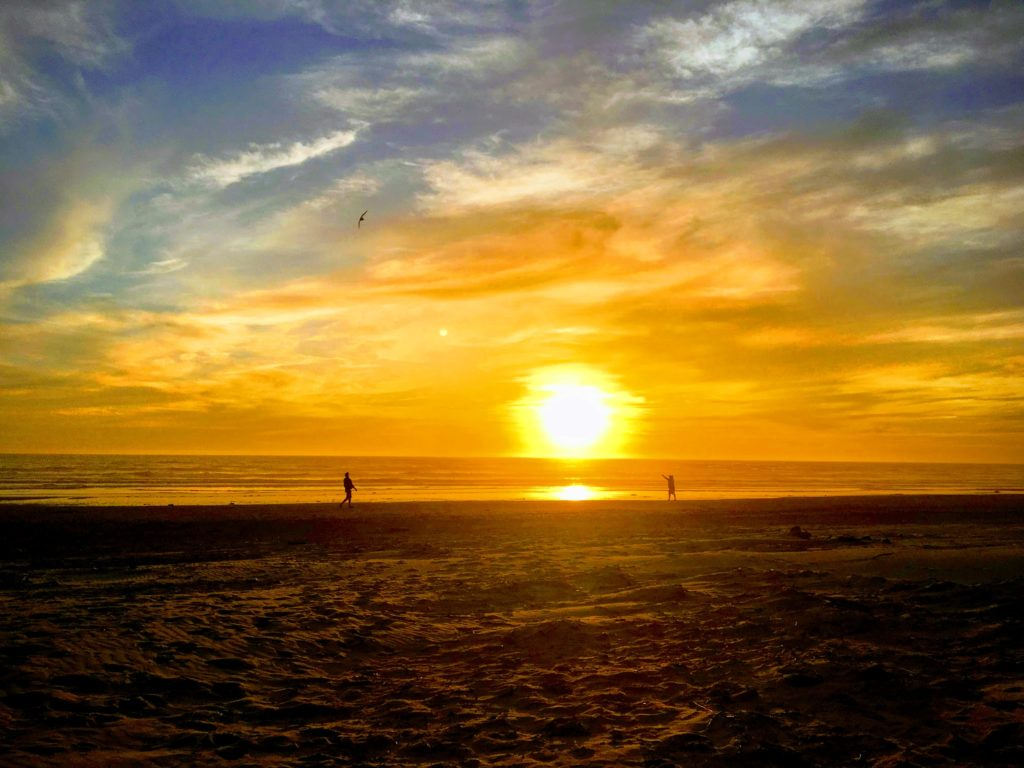 Oregon Coast Day Three: Kites and Evening on the Beach
