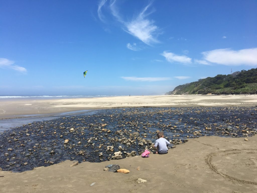 Oregon Coast Day Four: Agate Hunting