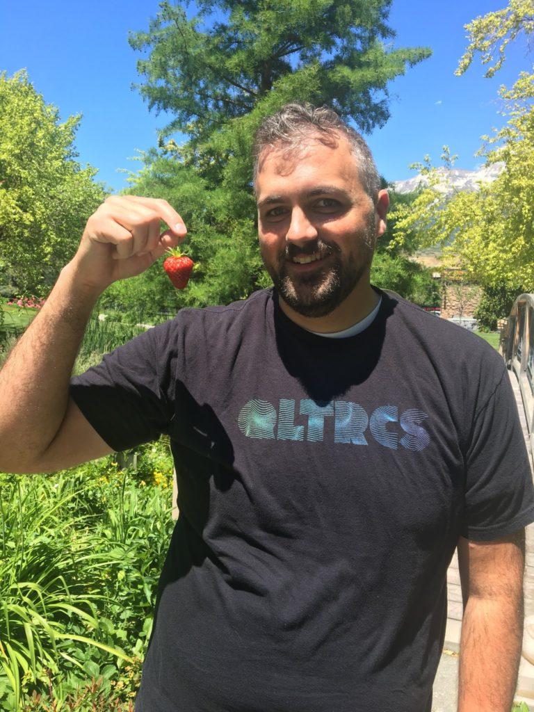 Picking Strawberries at Qualtics