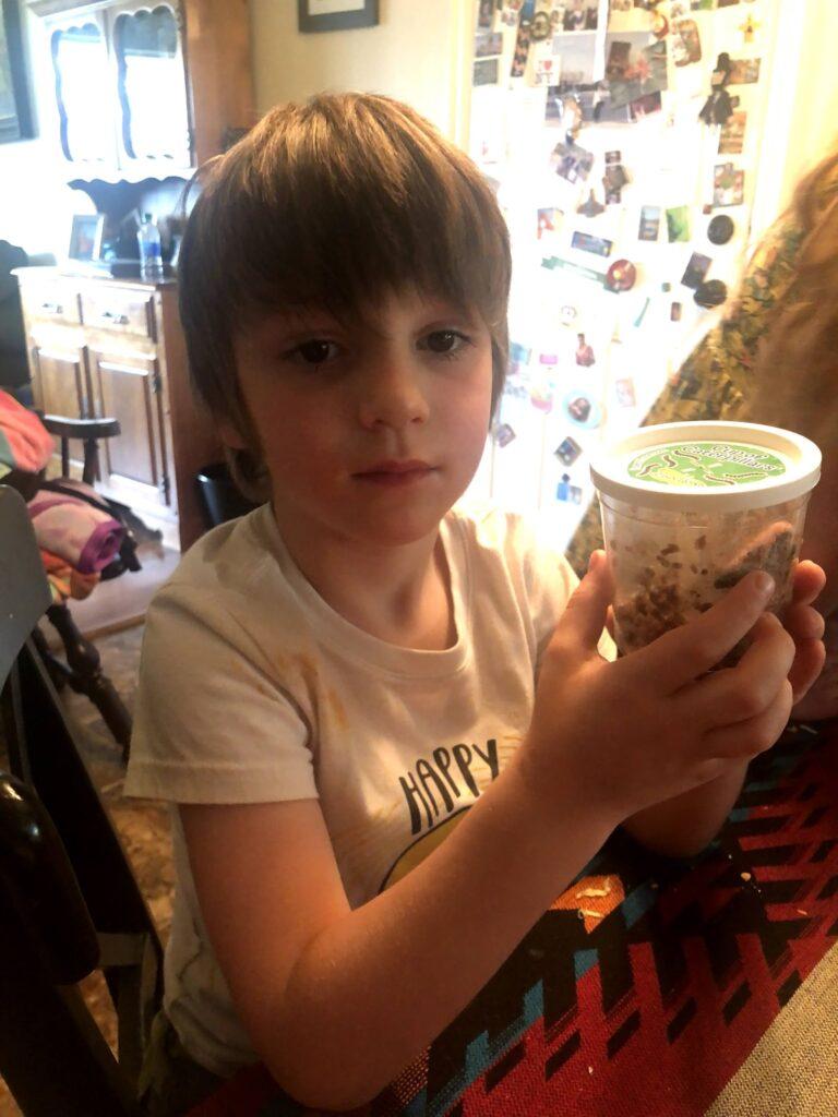 Lucas's Birthday Week: Butterflies Step Two