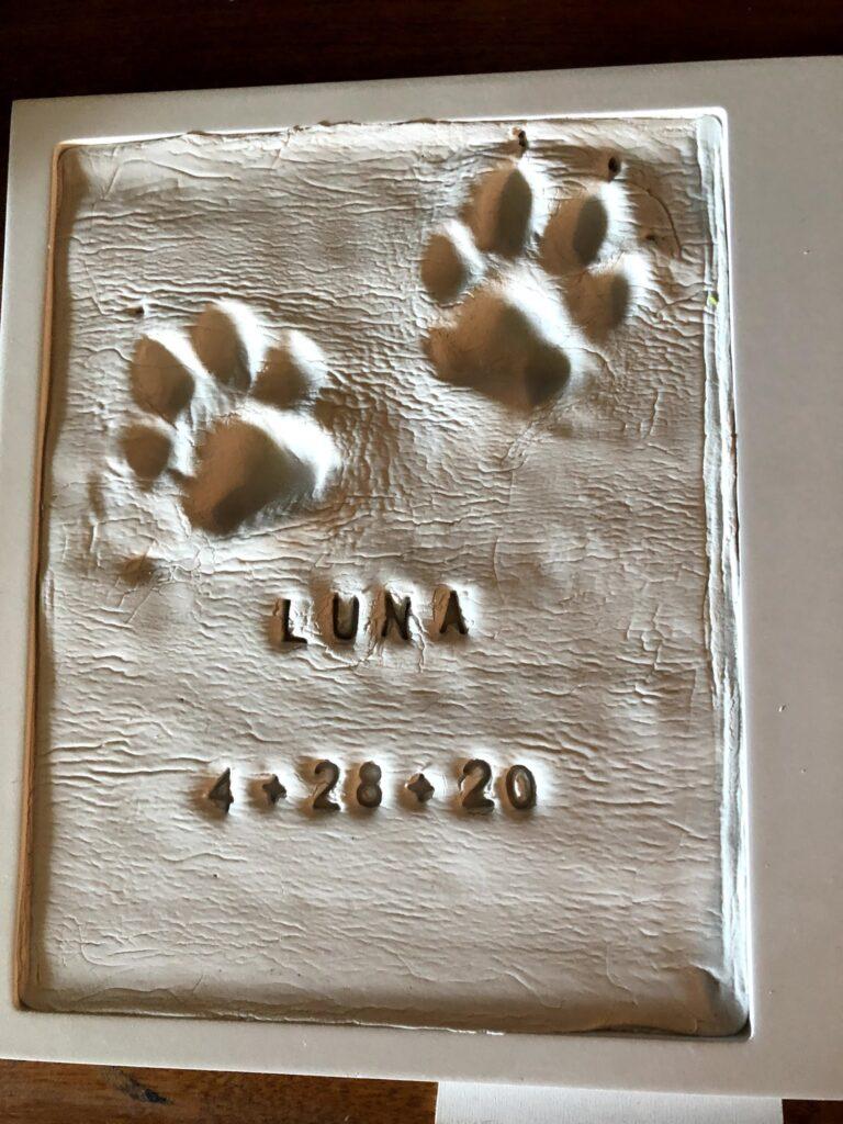 Luna's Puppy Print
