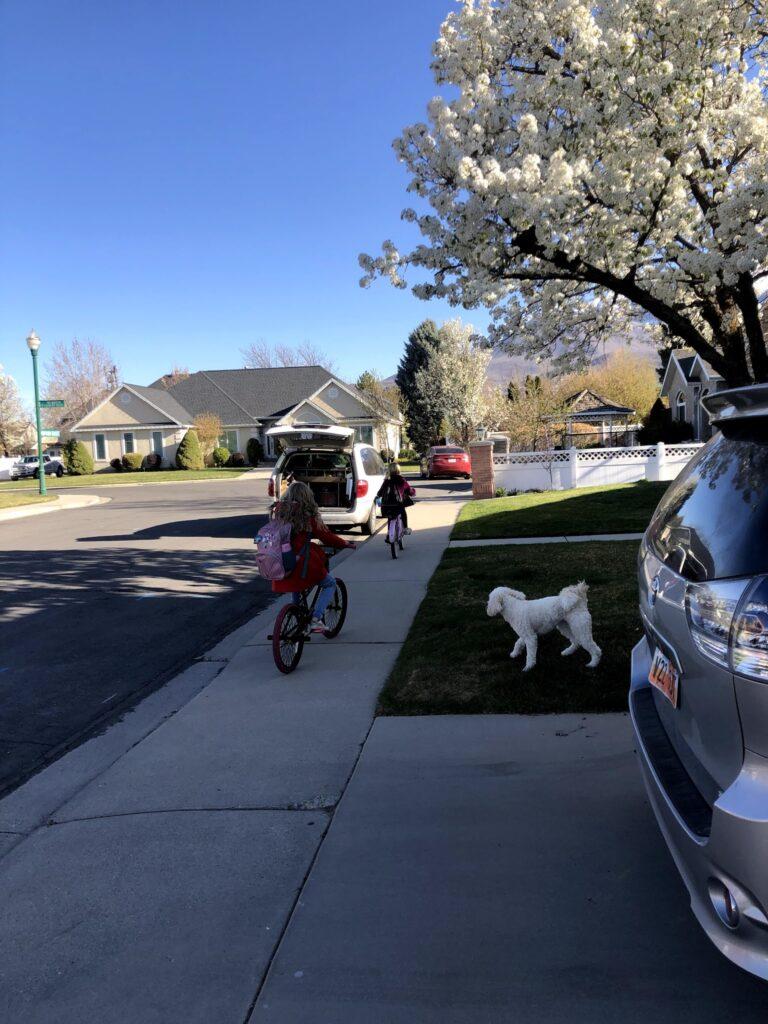 Mirah Starts to Bike to School!!
